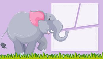 Olifant op paarse achtergrond