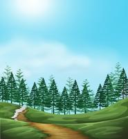 A Woodland background scene vector
