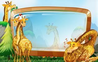 Kaderontwerp met giraf in tuin