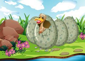 Scena del fiume con uovo da cova di anatre