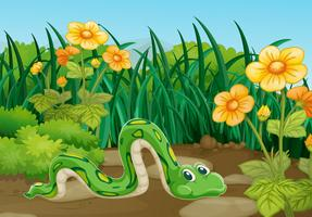 Grön orm kryper i trädgården