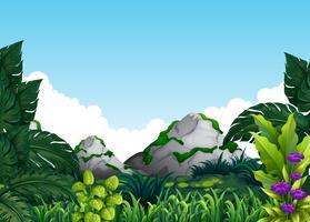 En grön naturlig mall