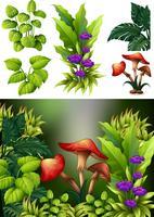 Scène de fond avec des champignons et des fleurs
