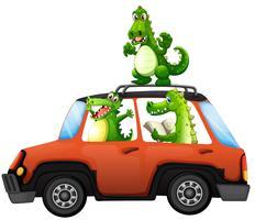 Krokodil resa med bil