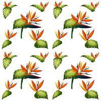 Seamless background design with bird of paradise flower vector