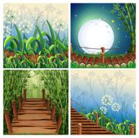 Vier Naturszenen mit Holzbrücke