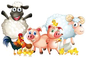 Muitos tipos de animais de fazenda