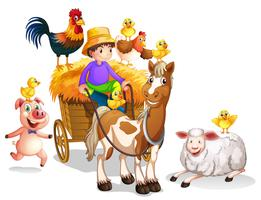 Farmer and many farm animals