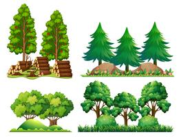 A Set of Forest Landscape vector