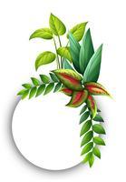 Plantilla de borde con hojas verdes