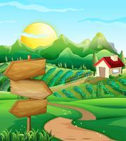 Escena con campo de hortalizas y corral.