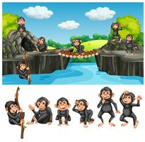 Baby ape in cave vector