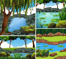 Vier Hintergrundszenen mit Fluss im Wald