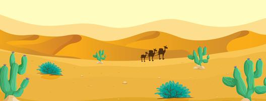 Camel at the desert vector