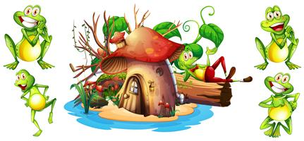 Happy frogs and mushroom house