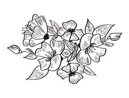 Hand drawn sketch of Rosa canina flower