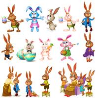 Different characters of bunnies