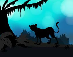 Silhouette background with tiger in forest
