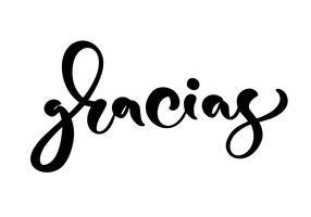 """Gracias"" Vector text in Spanish (""Thank you"")"