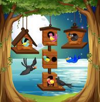 Vele vogels bij vogelhuisje in de tuin