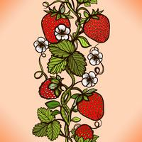 Abstract color seamless lace pattern with flowers, leaves and strawberry.