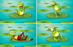 Scène avec des grenouilles sur nénuphar