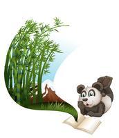 Libro de lectura de panda sobre bambú.
