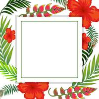 Beautiful Tropical Summer Flower Frame vector