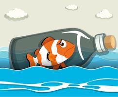 Clownfish in the bottle at sea