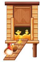 Gallinero con gallina y pollitos
