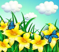 A garden with yellow flowers and blue butterflies