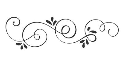 Vector Hand Drawn Calligraphic Spring Flourish Design Elements. Floral light style decor for web, wedding and print. Isolated on white background Calligraphy and lettering illustration