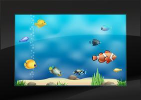 Moderno acuario en el interior con exóticos peces marinos.