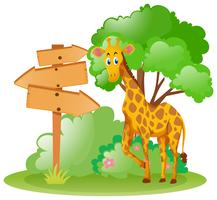 Giraffe standing by the wooden sign in park
