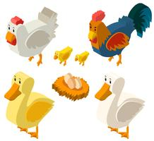 Diseño 3D para gallinas y huevos.