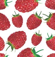 Seamless background with raspberry
