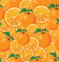 Un fond transparent d'oranges