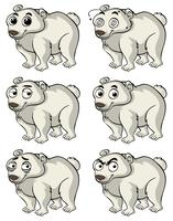 Polar bear with different facial expressions