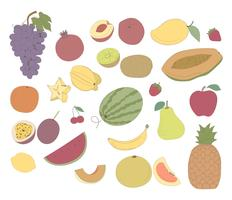Vector of different kinds of fruits