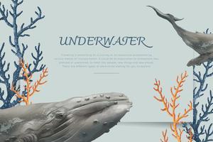 Hand gezeichneter Wal
