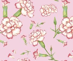 Hand drawn carnation pattern background