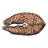 Hand drawn fish fillet