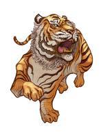 Bråkig japansk tiger handritad illustration