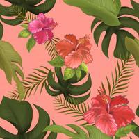Flores de hibisco na ilustração de fundo rosa