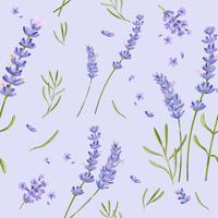 Hand drawn lavender flower pattern