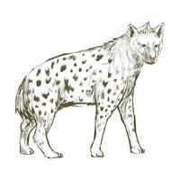 Illustration ritstil av hyena