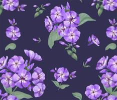 Handritat lila phlox mönster