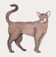 Conjunto de arte vetorial de ilustração de animais
