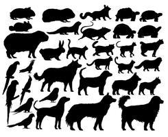 Estilo de desenho de ilustração de coleção animal