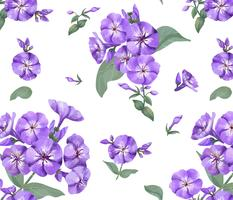 Hand drawn purple phlox pattern